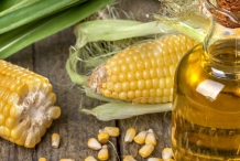 Corn-oil-Turkey wheat