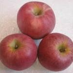 Winesap Apple
