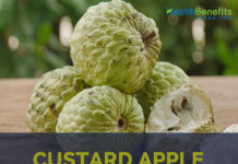 Custard Apples facts and health benefits