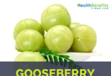 Gooseberry Facts and health benefits