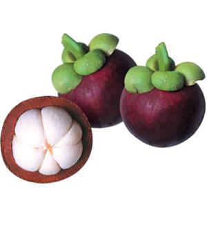 Health Benefits of Noni Fruit
