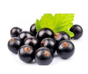 Health benefits of Maqui berry