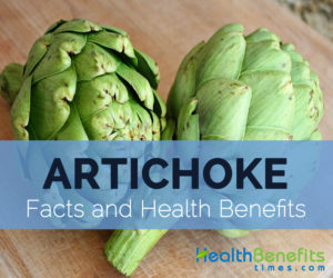 artichoke-facts-and-health-benefits