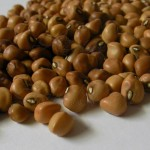 Crowder cowpea