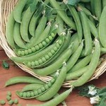 Super Snappy Green Peas