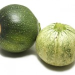 Zucchini 'Ronde de nice'