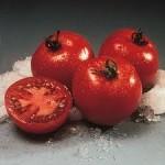 Crista Tomato