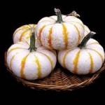 Lil' Pumpkemon Pumpkin