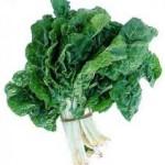 Savoy spinach