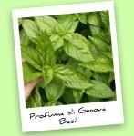 Profuma di Genova Basil