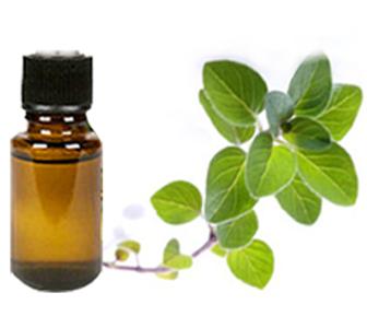 Health benefits of Oregano Essential Oil