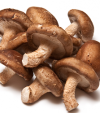Health benefits of Shiitake Mushroom