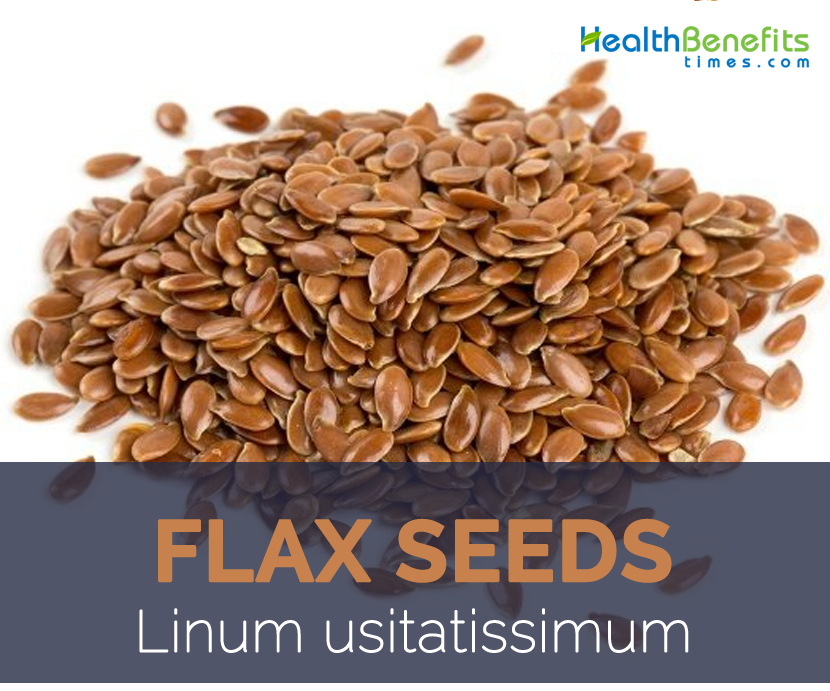 Flax Seeds facts and health benefits