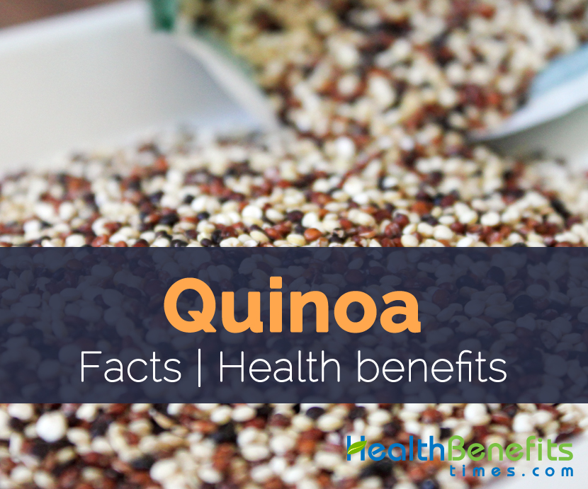 Quinoa Facts and Health benefits