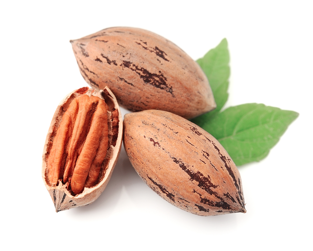 nuts r good essay Food and nutrition essay  most people have some common knowledge on what is good and what is bad for the human body to consume fruits, vegetables, nuts, and .
