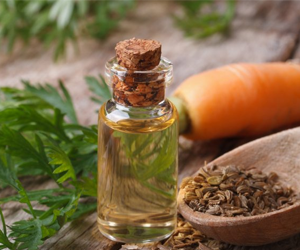 Health Benefits of Carrot Seed Essential Oil