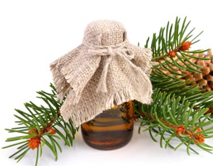 Health Benefits of Fir Needle Essential Oil