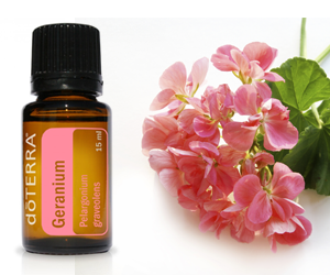 Health Benefits of Geranium Essential Oil