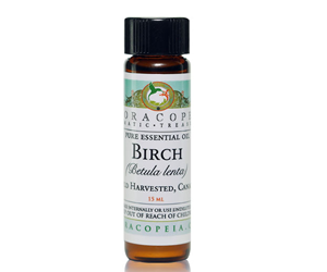 Health benefits of Birch Essential Oil