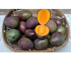 Kasturi Fruit