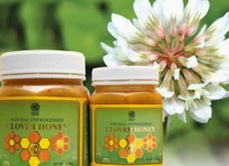 Clover Honey