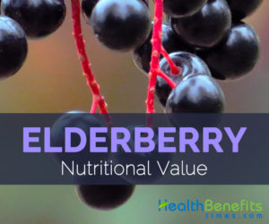 Elderberry Nutritional Value