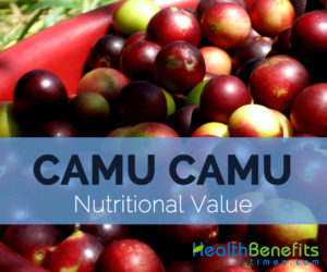 Camu-Camu-nutritional-value