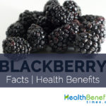 Blackberry Facts and Health Benefits