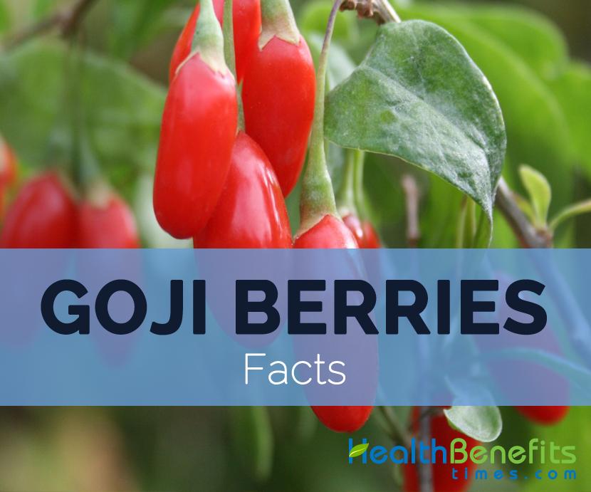 goji berries nutritional value