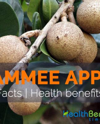Health benefits of Mammee Apple