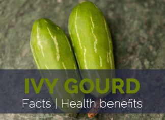 Ivy Gourd Facts and Health benefits