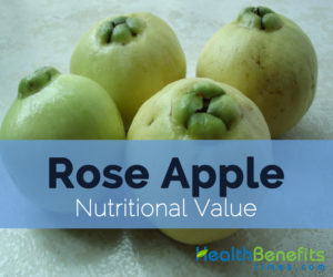 Rose-apple-nutritional-value