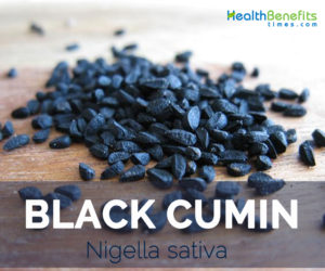Black Cumin facts and health benefits