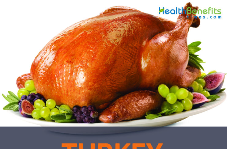 Turkey facts and health benefits