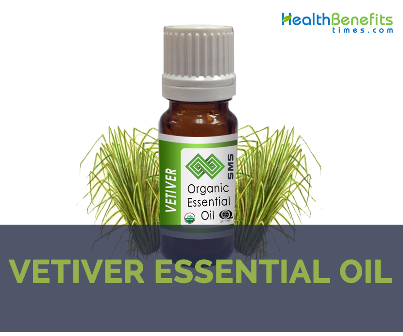 What is vetiver oil