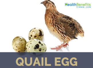 Quail facts and health benefits