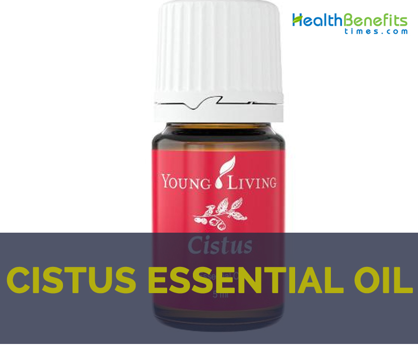 Cistus essential oil facts and health benefits
