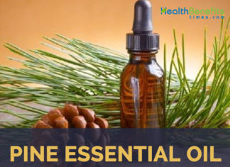 Pine essential oil facts and benefits