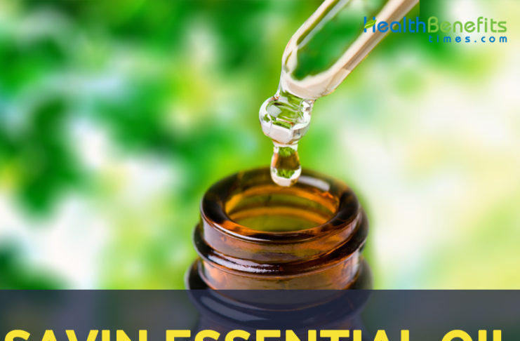 Savin essential oil facts and benefits