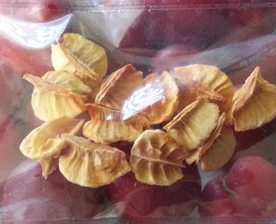 Seeds-of-Acerola-cherry