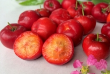 Half-cut-Acerola-chery