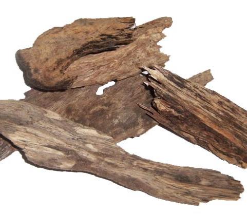 Agar-Wood--Calambac