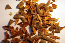 Dried-barks-of-Alder-buckthorn