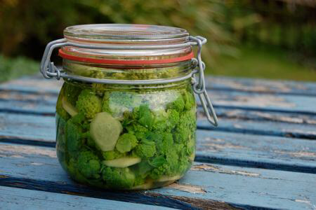 Pickled-Buds-of-Alexanders