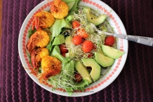Spicy-Shrimp-with-Avocado-and-Alfalfa-sprouts-salad