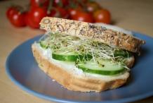 Cucumber-Alfalfa-Sandwich