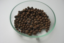 Allspice-dried