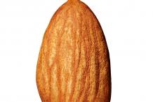 Almond-nut