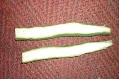 Half-cut-Angled-Loofah