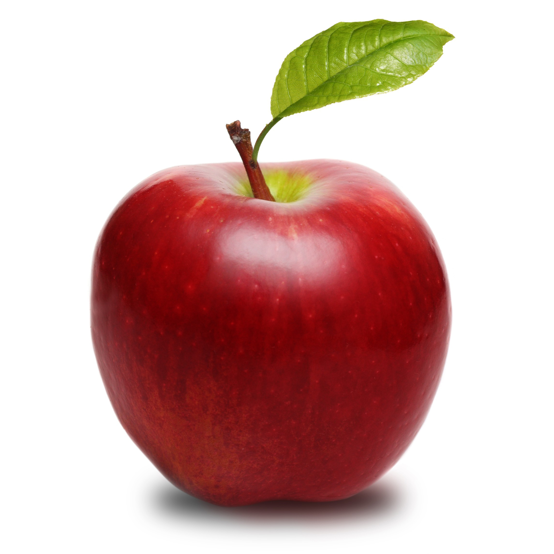 benefits of apples Green apples contain lots of nutrients including vitamins and minerals get information about nutritional data and health benefits of green apple fruit.